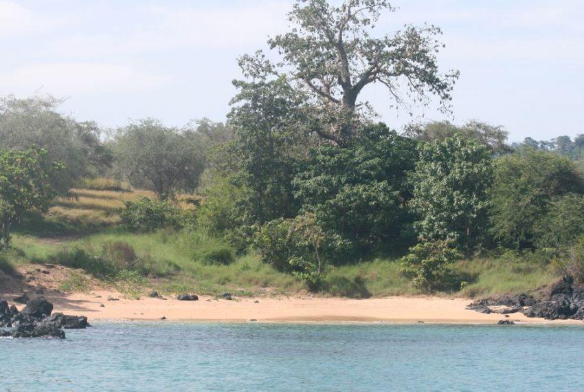 PRO22 Terreno 2-2ha praia conchas 10