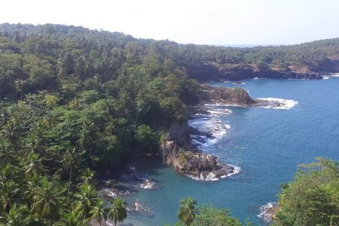 TER102 Roça Nova Olinda 80 hectares com casa colonial e praias 003