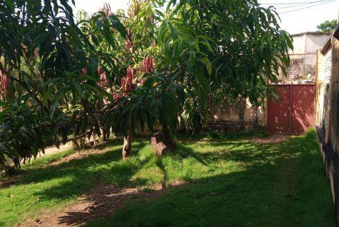 FER02_Quartos luminosos arrendar curta duracao Campo de Milho Sao Tome_01