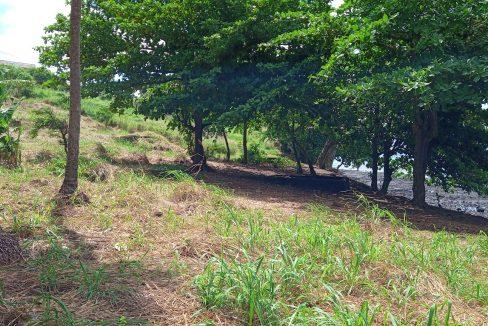 PRA 04 Terreno beira mar 2500m2 Passadeira Sao Tome com casa para renovar_010