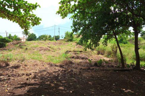 PRA 04 Terreno beira mar 2500m2 Passadeira Sao Tome com casa para renovar_015