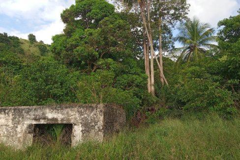 PRA 05 Terreno 1200m2 beira-mar com ponte e edifício para reabilitar 022