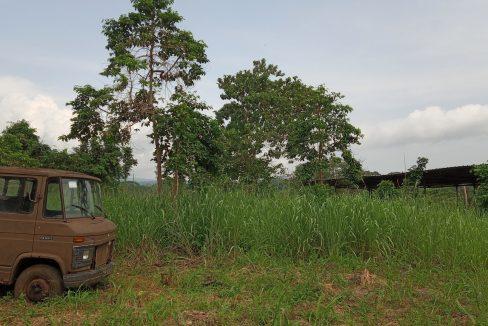 PRO 104 Terreno 5000m2 com armazem Palmar Sao Tome_12